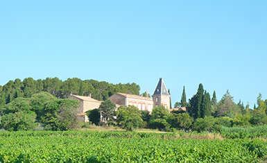 Properties sale and purchase, viticultural estates and farming, vineyards, in Occitanie.
